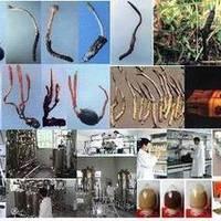 安徽省微生物防治重点实验室