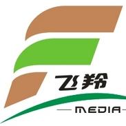 广州飞羚广告有限公司
