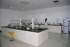 功能性聚氨酯弹性体配方与工艺系统技术